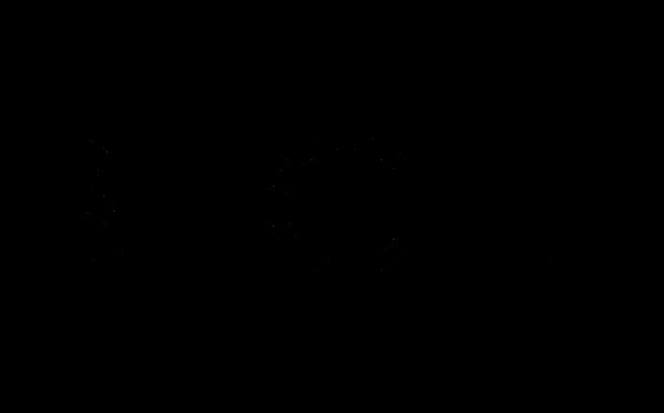 bigli logo