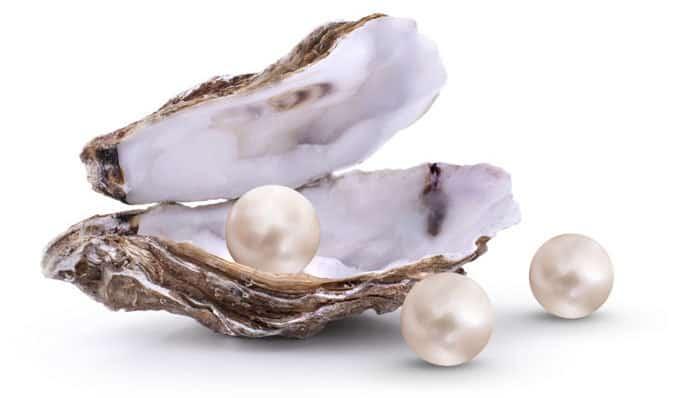 skalda perlen